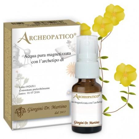 Beech 30 CA - Dr. Giorgini