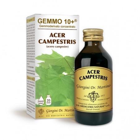 GEMMO 10+ Acero Campestre 100 ml Liquido analcoolico - Dr. Giorgini