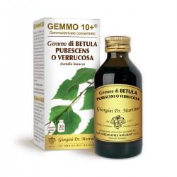 GEMMO 10+ Betulla Bianca...